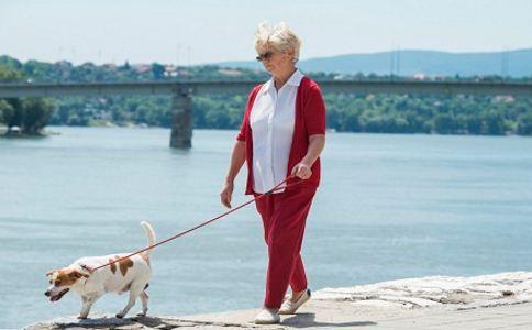老人退休后如何运动 老人运动有什么禁忌 老人适合哪种运动