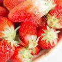 春分养生吃什么 春分吃哪些食物能养生 春分什么食物能养生