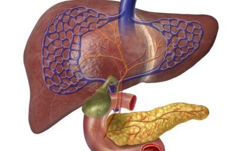 胰腺炎是什么引起的 胰腺炎的原因 胰腺炎能治好吗