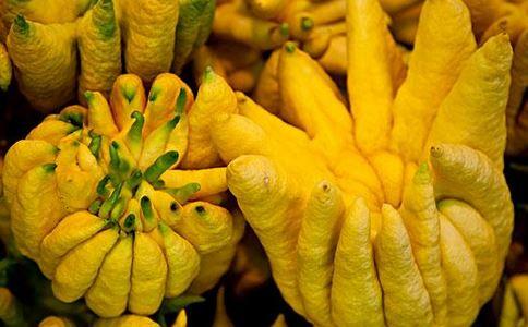 佛手瓜可以减肥吗 佛手瓜的热量高吗 佛手瓜的营养价值