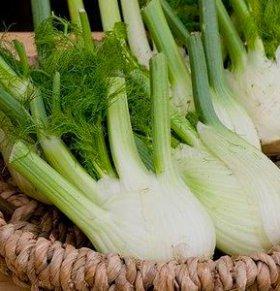 茴香可以减肥吗 茴香的热量 茴香的营养价值