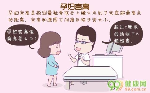 孕妇宫高 孕妇宫高标准是多少 孕妇宫高怎么测量好