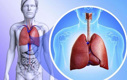 老布什因肺炎入院治疗 如何治疗肺炎 预防肺炎的方法