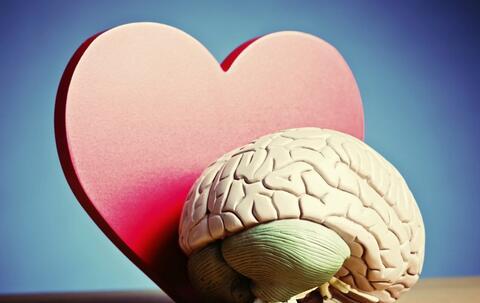开颅手术突然苏醒 如何预防脑瘤 导致脑瘤的原因