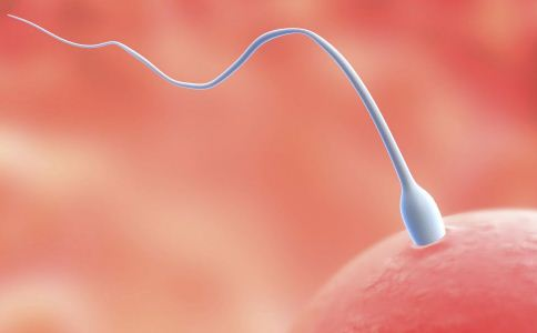 人工授精的类型 人工授精的适用人群 哪些人可以做人工授精