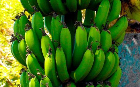 便秘的人能吃香蕉吗?吃香蕉能缓解便秘吗