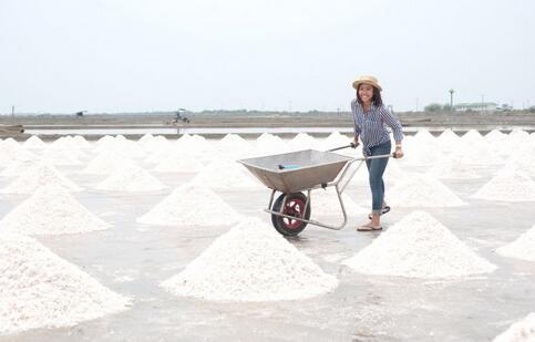 臭脚盐消息:河南召回7000吨食盐