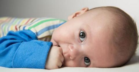 夏天宝宝长痱子怎么办 怎么预防宝宝长痱子 宝宝长痱子怎么调理