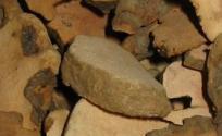 土茯苓的功效与作用 土茯苓是什么 土茯苓的功效