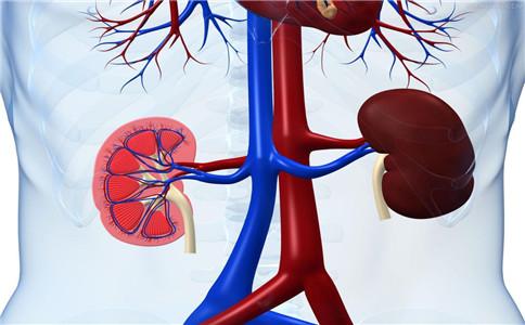 肾积水饮食上注意什么 肾积水的保健 肾积水的饮食禁忌