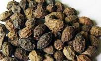鸦胆子的功效与作用 鸦胆子是什么 鸦胆子的功效