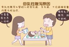 母乳性腹泻原因