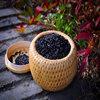 黑米的五大营养功效
