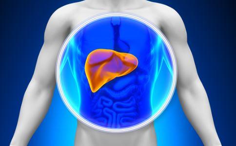 乙肝治疗 得了乙肝怎么办 得了乙肝