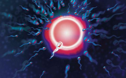 如何提高卵子质量 提高卵子质量的方法 卵子质量差怎么办