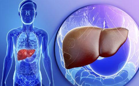 生活中如何养肝 养肝的方法有哪些 怎么养肝好