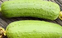 丝瓜的功效与作用 丝瓜是什么 丝瓜的功效