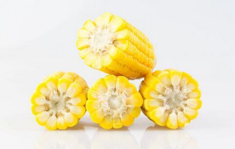 成都烤玉米震惊北方人 玉米有什么营养 玉米的营养有哪些