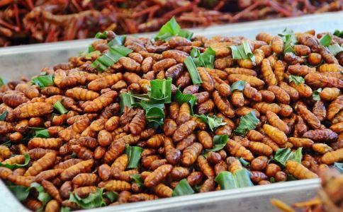 丽江举行吃虫大赛 昆虫营养可不少