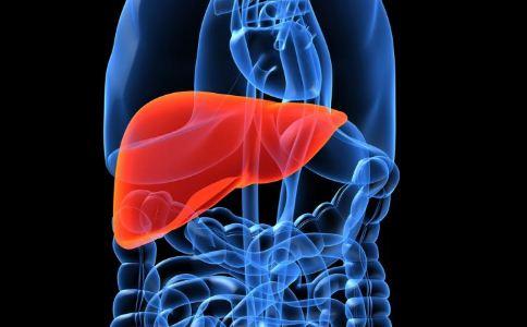 什么人会得脂肪肝 哪些人容易得脂肪肝 脂肪肝的高危人群