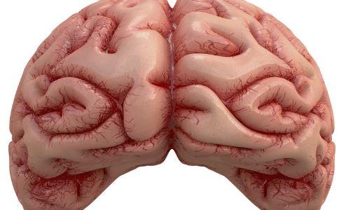 引起脑中风的原因 脑中风的原因 脑中风是什么原因