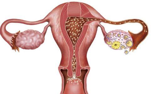 卵巢早衰原因有哪些 治疗卵巢早衰的方法 卵巢早衰怎么治疗