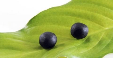 六味地黄丸是补药吗 六味地黄丸的作用 六味地黄丸的服用方法