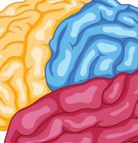 如何开发孩子的左脑 如何开发孩子的右脑 怎样开发左脑和右脑