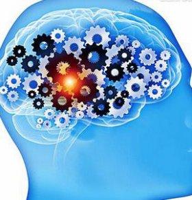 如何快速开发左脑 如何开发左脑 怎样开发左脑