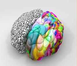 怎样开发人的右脑 成年人如何开发右脑 怎么样开发右脑