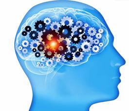 如何快速开发左脑 开发左脑的实用方法 开发左脑的方法