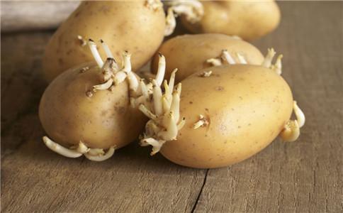 发芽的食物能吃吗 哪些食物发芽不能吃 什么食物发芽后能吃