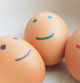 荷兰调查毒鸡蛋 1家农场鸡蛋不能食用