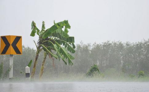 山东莱阳暴雨袭城 暴雨天气如何安全出行 暴雨天气出行注意事项