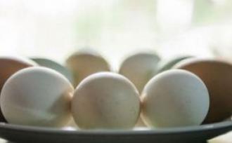 欧洲毒鸡蛋继续蔓延 新鲜鸡蛋要这么挑