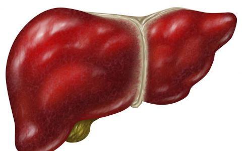 脂肪肝怎么办 治疗脂肪肝的方法 有哪些方法能治疗脂肪肝