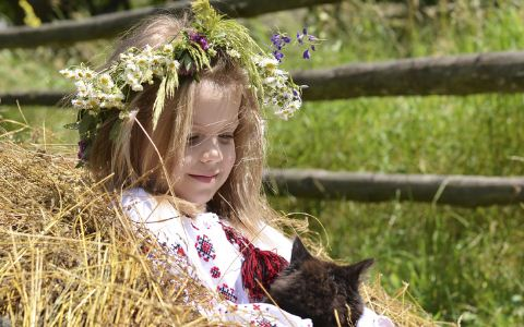 该不该给孩子养宠物 养宠物的好处 如何挑选适合孩子的宠物