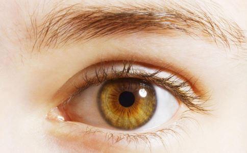 吃什么能护眼 保护眼睛吃什么食物 护眼的食物有哪些