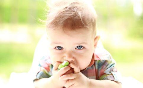 秋季宝宝吃的食物有哪些 秋季宝宝吃什么好 秋季宝宝饮食