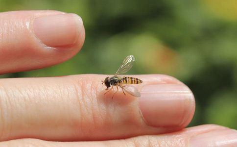 女子与蜜蜂拍孕照 如何避免蜜蜂蛰咬 蜜蜂蛰咬如何处理