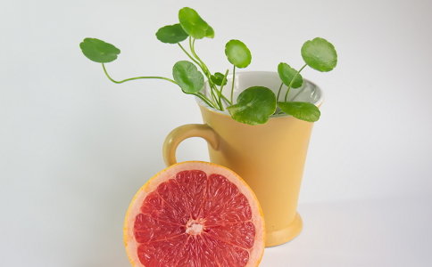 西柚怎么吃可以减肥 西柚减肥食谱有哪些 西柚减肥的效果好吗