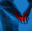 肘关节 关节炎 人体关节图