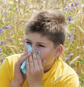 流鼻涕咳嗽不是感冒 或是花粉过敏症!