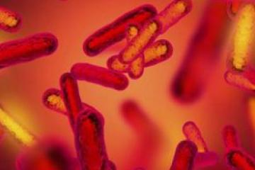 流感疫情:澳大利亚流感已达高峰