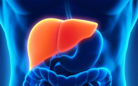 秋季如何养肝护肝 秋季如何保养肝病 肝病的饮食禁忌