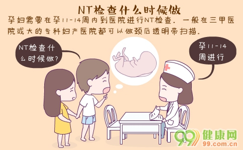NT检查什么时候做 NT检查什么 做NT检查必要性