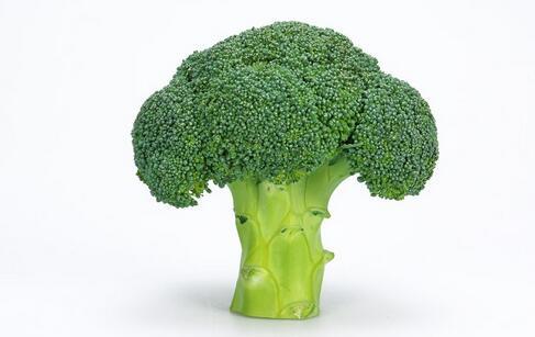 如何护肝 护肝吃什么食物好 护肝的食物有哪些