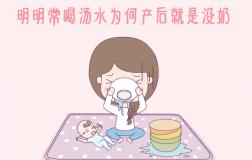 明明常喝汤水 为何产后就是没奶