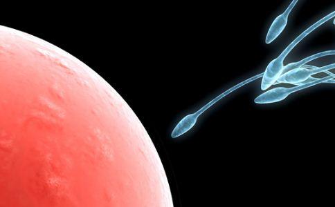 人工授精的有哪些分类 人工授精的优点是什么 人工授精的精液来自哪里