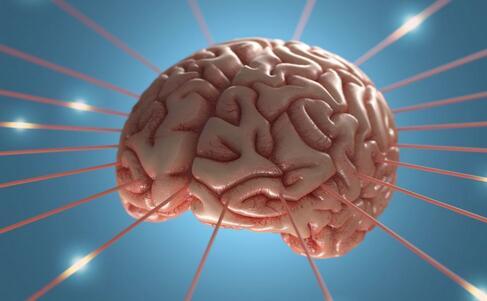 记忆达人比拼脑力 如何提高记忆力 提高记忆力的方法